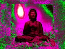 buddhabar.jpg