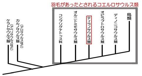 獣脚類の系統図