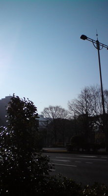 Yu's WEBSITE-20081230092321.jpg