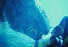 映画ジュラシックパークのティラノサウルス