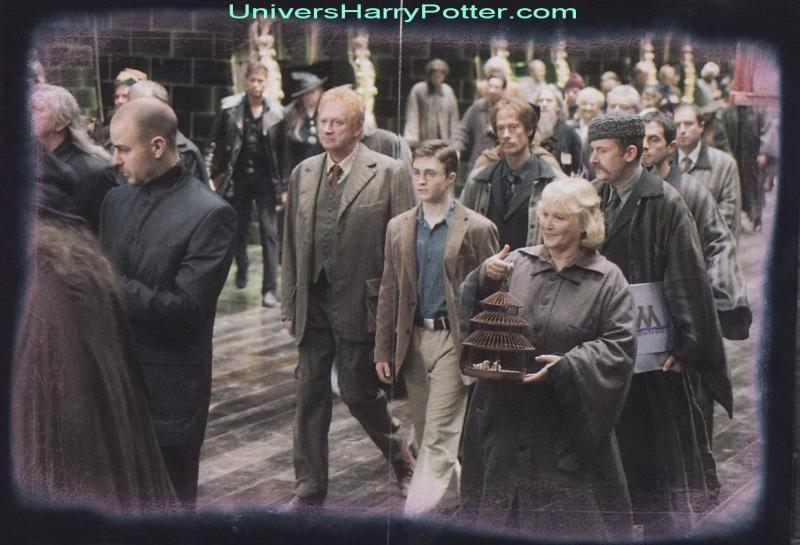 Deathly Hallows|S'harry's Harry