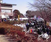 ☆蘭ラン日記☆ -2009011210410000.jpg
