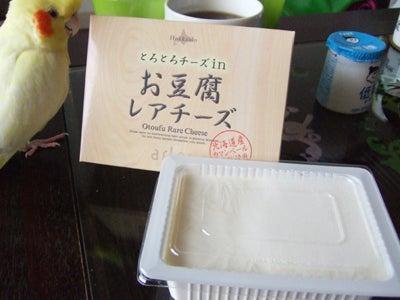 たんぽぽ051807