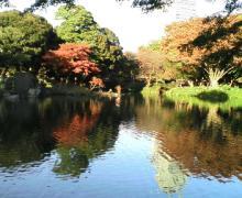小石川庭園4