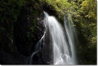 うそぐいの滝6(上部)