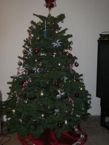 クリスマスツリー 2006