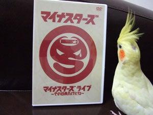たんぽぽ072006