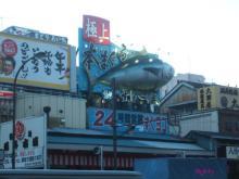 flighty life-tsukiji