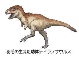 ティラノサウルス幼体