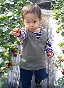 200701134