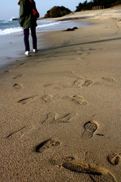 blog++Simple life++