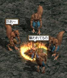 オオカミ2