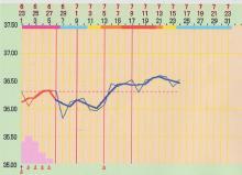 の〇ら病院6週期目 AIH5回(9回)目