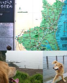 '茨城県'と言っても福島県のスグ手前です。
