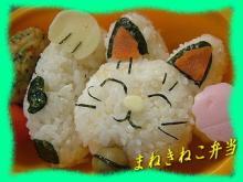 招き猫弁当