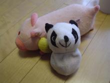 パンダとブタ