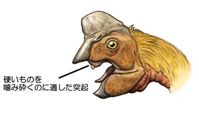 川崎悟司 オフィシャルブログ 古世界の住人 Powered by Ameba-オビラプトルの頭部