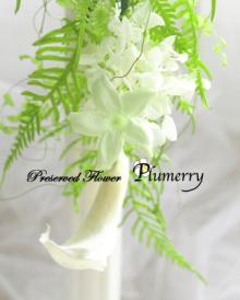 Plumerry(プルメリー)プリザーブドフラワースクール (千葉・浦安校)-ジャスミン カラー ブーケ