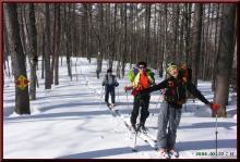 ロフトで綴る山と山スキー-新道分岐