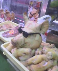 豚さんサングラス
