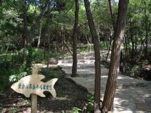 大連金石灘浜海国家地質公園2