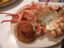 カルマンギアのある生活-セイコ蟹の外子