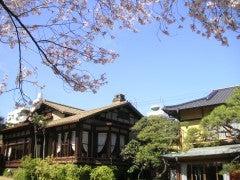 起雲閣と桜