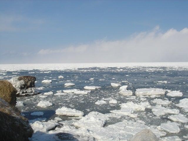 流氷 納沙布岬2