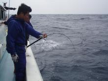 沖縄から遊漁船「アユナ丸」-釣果(H21.2.22)
