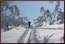ロフトで綴る山と山スキー-登り返し