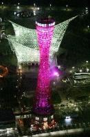 ピンクポートタワー