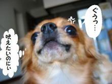 チョッパー(`Д´)!4