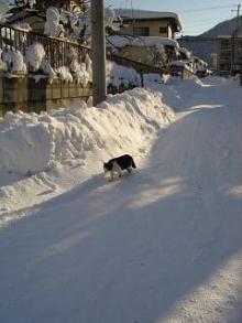 '06-山形雪道4