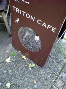toriton1