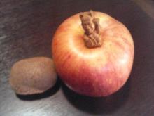 りんごキウイ1