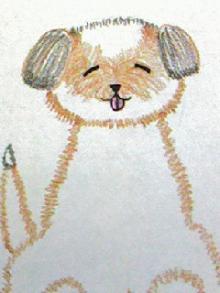 メノガイア@つれづれなるままに-愛犬 シーズー 似顔絵