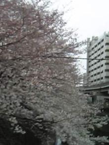 06-03-26_13-08.jpg