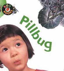 Pull bug