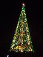 USJのクリスマスツリー3