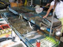 海鮮まつり