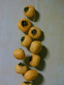干し柿吊るす
