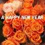 ★謹賀新年。:*☆