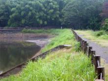 midorigawa