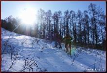 ロフトで綴る山と山スキー-太陽に向かい