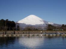 Fishing Blog OFFSHORE CRAZY! ~ 夢は一発大物!   鮪だ!鰤だ!大政だ!巨カンパだ!大鯛だ!なんでもこ~い!-富士山