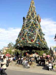 クリスマスツリー TDS
