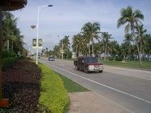 海岸沿いの道路