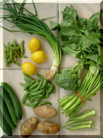 手作りウエディング ソーイング・スクールそしてソーイング・セラピー-ハワイの野菜
