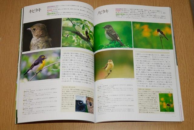 デジスコで野鳥撮影が楽しめる本