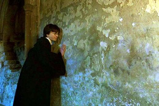 壁を伝うハリー